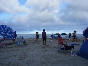 BLOG2010_0810アヒル0006.JPG